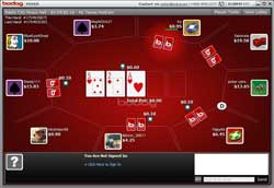 Bodog Table View
