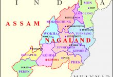 Nagaland Issues First Online Poker License in India