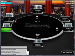 Tiger Poker Table View